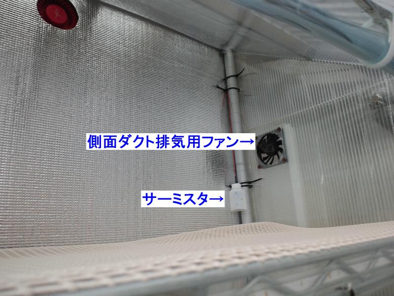 CA3J0605.jpg