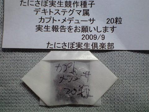 'CA3A0511.jpg